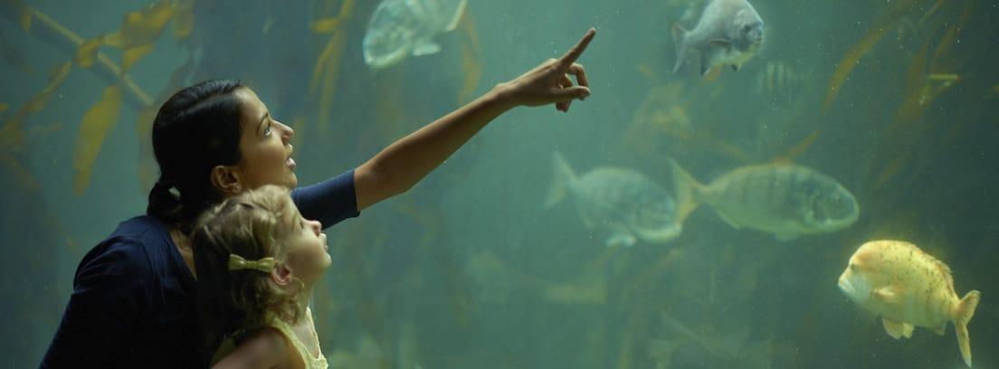Mujer con niña en brazos señalando un acuario con peces.