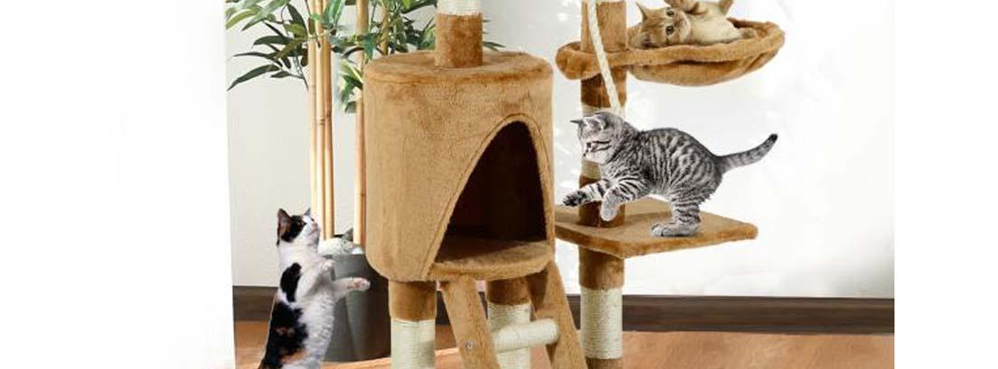 Tres gatos jugando en un árbol rascador marca Pawhut