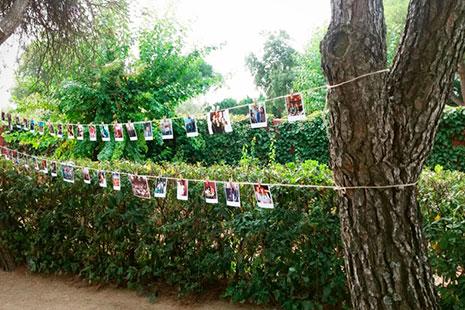 fotos instataneas colgadas sobre un hilo colgados entre arboles