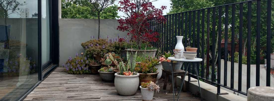 Terraza con plantas y suelo de madera