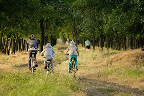 Madre practicando ciclismo con sus dos hijos
