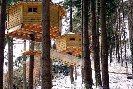 Cabañas de madera con en los árboles