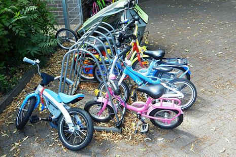 Bicis infantiles de diferentes colores y tamaños aparcadas sobre acera con hojas amarillas