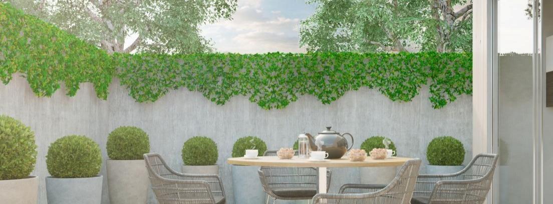 5 plantas de exterior para todo el a o canalhogar - Plantas jardineras exterior ...