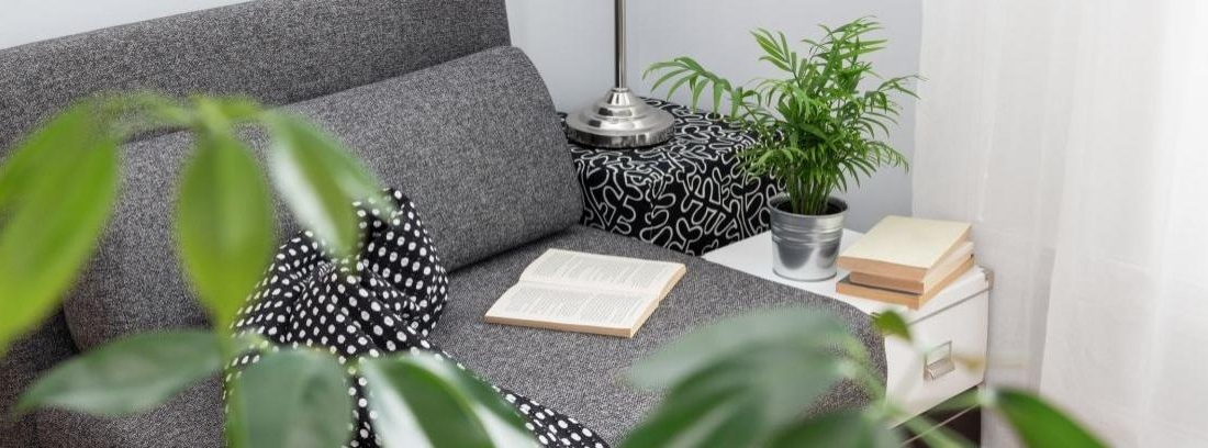 Actualiza tu rincón de lectura en casa