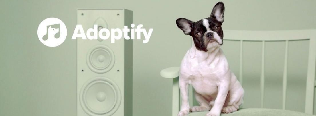 Adoptify fomenta la adopción de perros a través de la música
