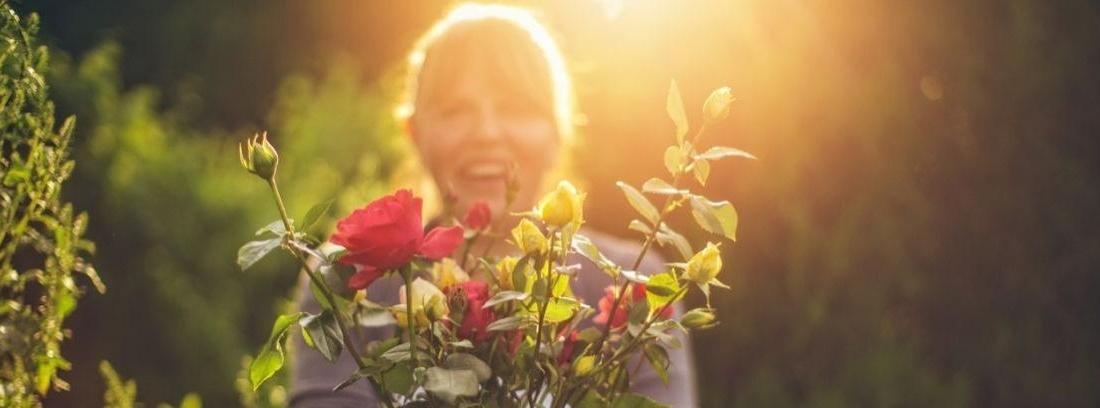 Aprende a plantar rosales y dale color a tu jardín