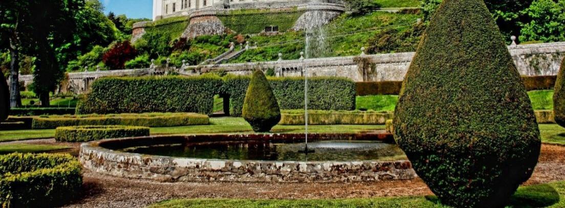 Guía para plantar arbustos en el jardín