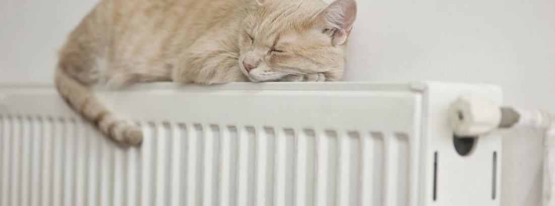 Cambiar radiadores antiguos