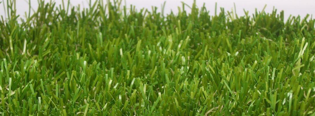 ¿Césped o grama? Principales diferencias