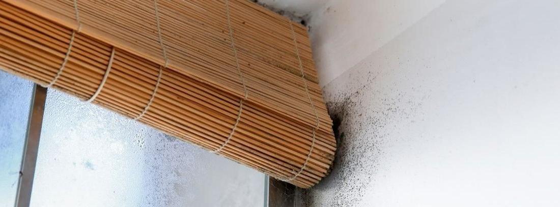 Cómo arreglar una humedad del techo