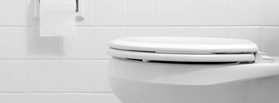 Cambiar el WC
