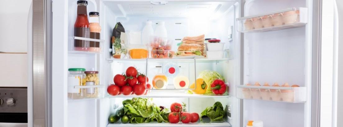 Convierte el congelador en una nevera