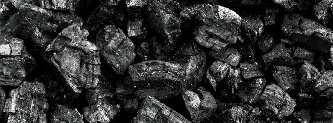 Cómo Hacer Carbón Vegetal Canalhogar
