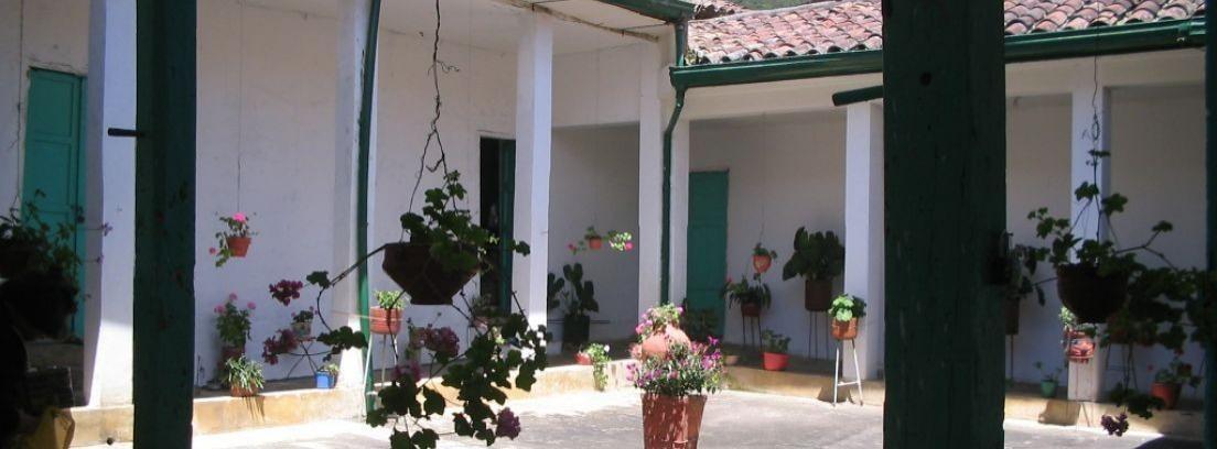 Crear un patio andaluz