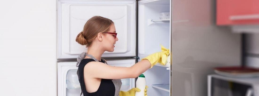 Consejos de limpieza para eliminar el moho de la nevera