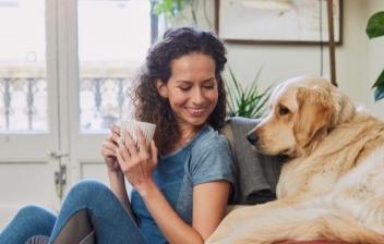 Perro sentado al lado de un sofá destrozado