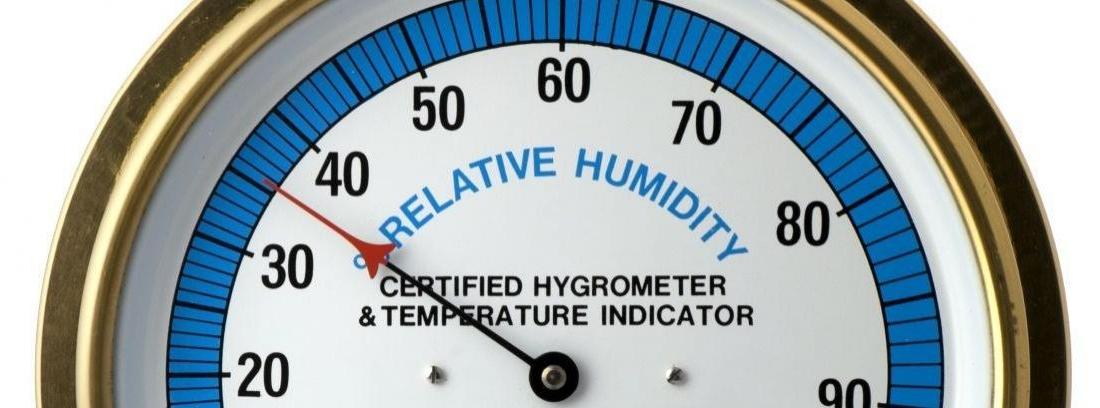 Usa un higrómetro para controlar la humedad de tu jardín