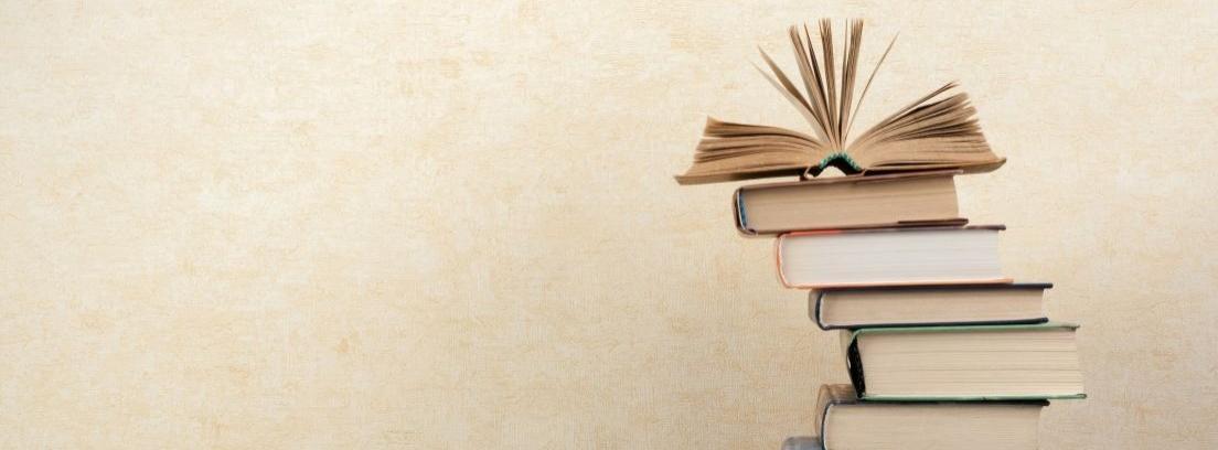 Descubre la nueva decoración con libros