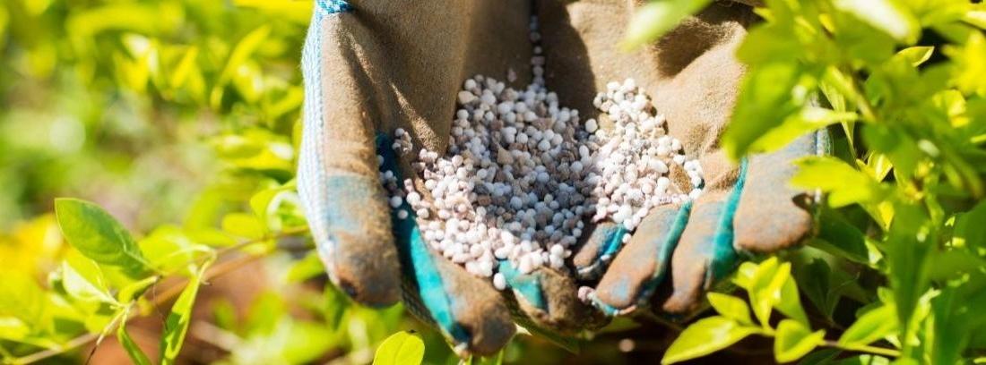 Tipos y usos de fertilizantes para césped
