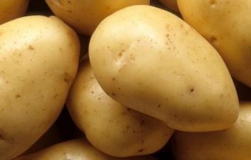 Conservar correctamente las patatas