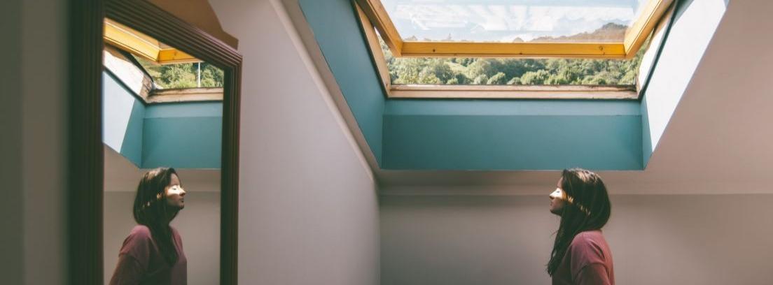 Ideas para protecciones de ventanas