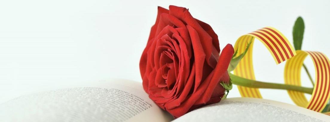 Injertar rosales, una labor que requiere delicadeza
