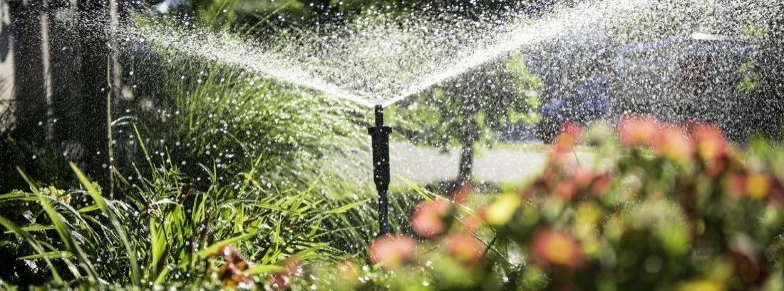 Instalar riego automático en el jardín