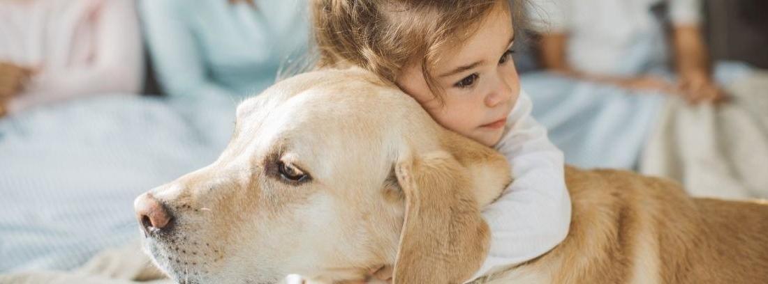 Un perro y un niño de espaldas mirando por una ventana