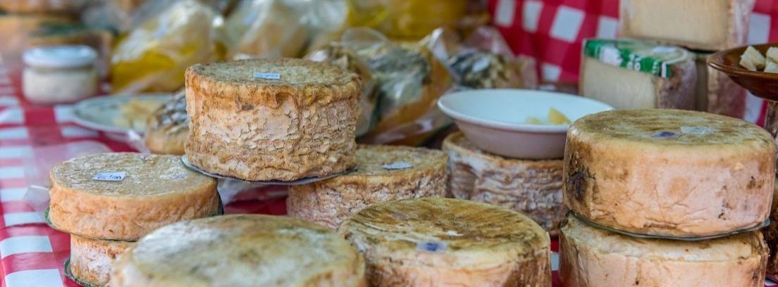 Varios tipos de queso sobre una mesa rústica de madera