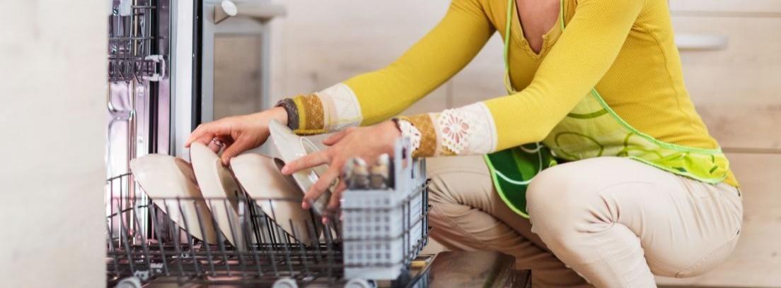 Cómo eliminar el moho del lavavajillas
