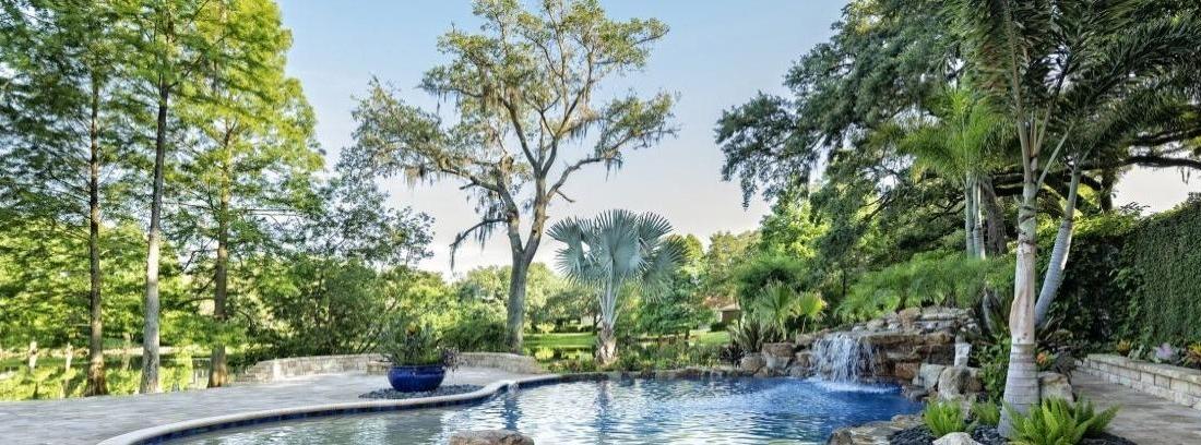 Plantas para los bordes de la piscina