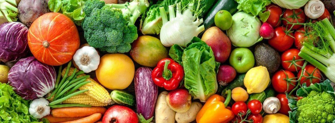 ¿Qué hortalizas se pueden plantar en verano?