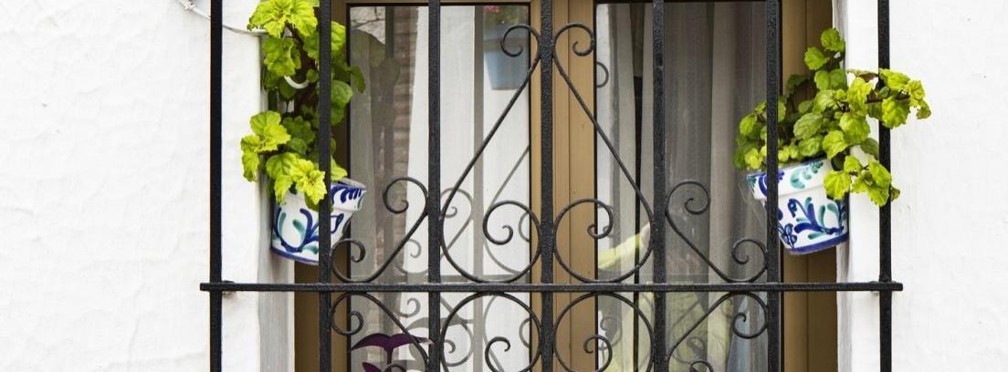Rejas en las ventanas, la seguridad en casa
