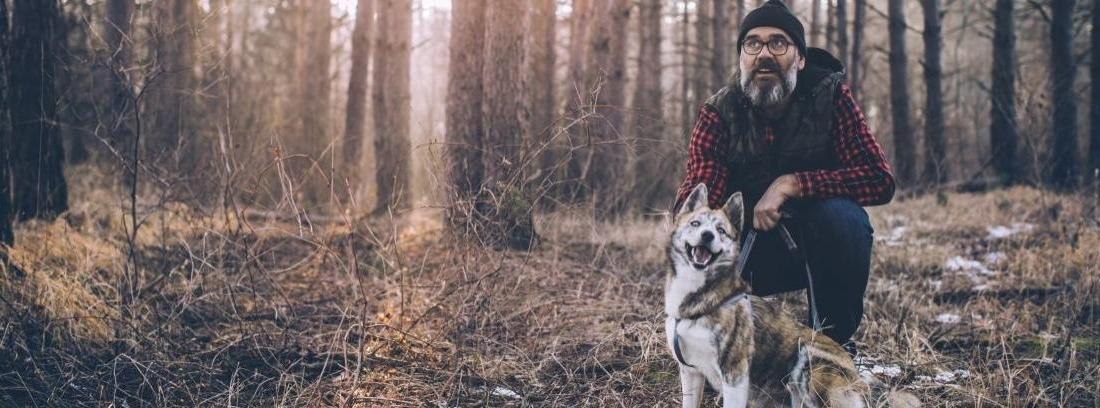 ¿Qué son los silbatos ultrasonidos para perros?