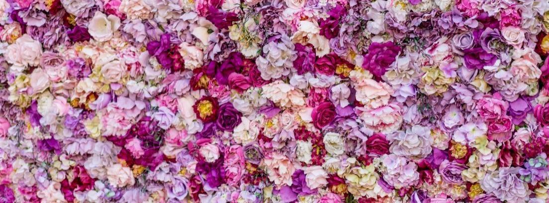 Tips para cultivar tus propias flores de lilas