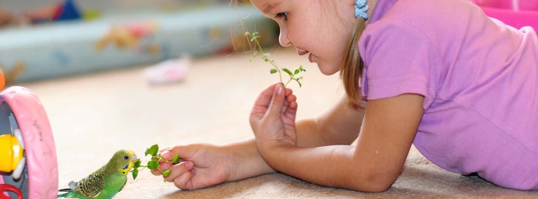 Una niña pequeña da de comer a un periquito en su habitación