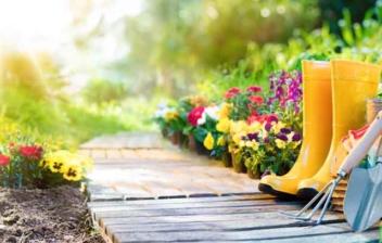Jardín con flores y utensilios para cuidarlo
