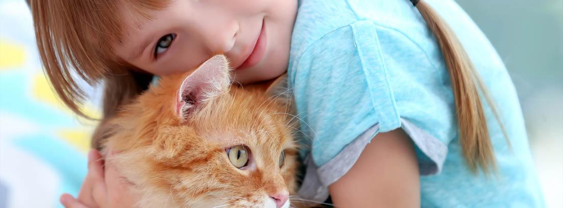 Niña pequeña abrazando a un gato