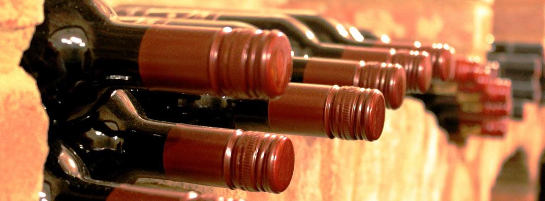 Qu es y c mo elegir una vinoteca para tu hogar canalhogar - Como montar una vinoteca ...