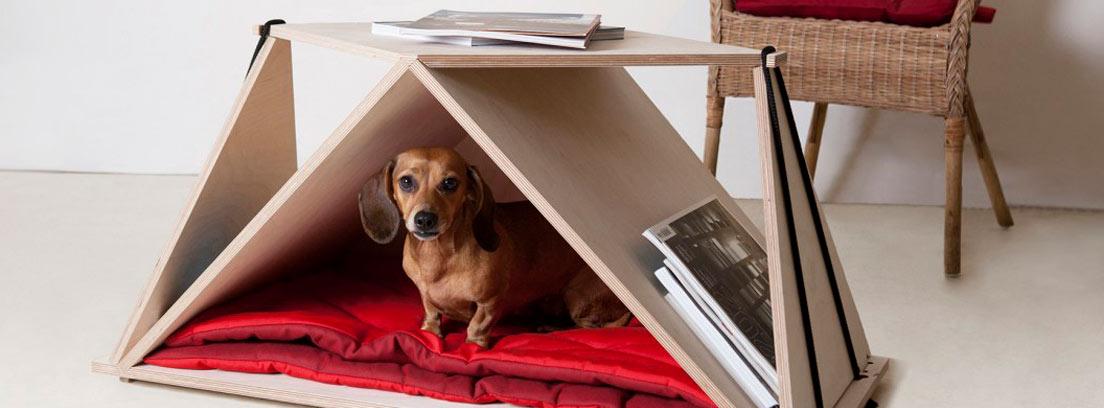 La casa para perros plegable de Fabbricabois que cumple también una función de mesa