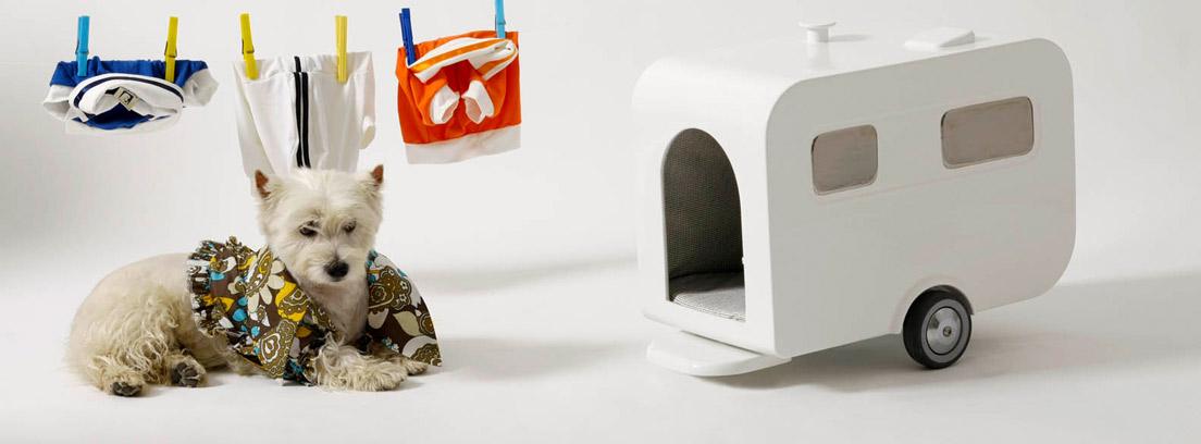 Casa para perro con forma de autocaravana, de Marco Morosini, junto a un perro y una cuerda con ropa tendida