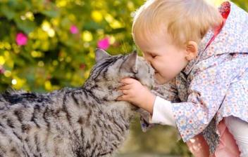 Niña dándole un beso a un gato