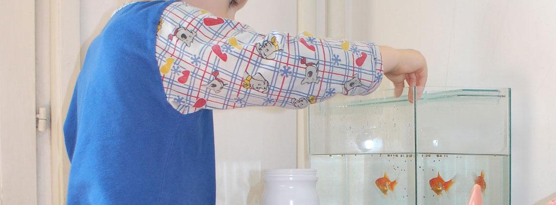 Niño alimentando peces en un acuario