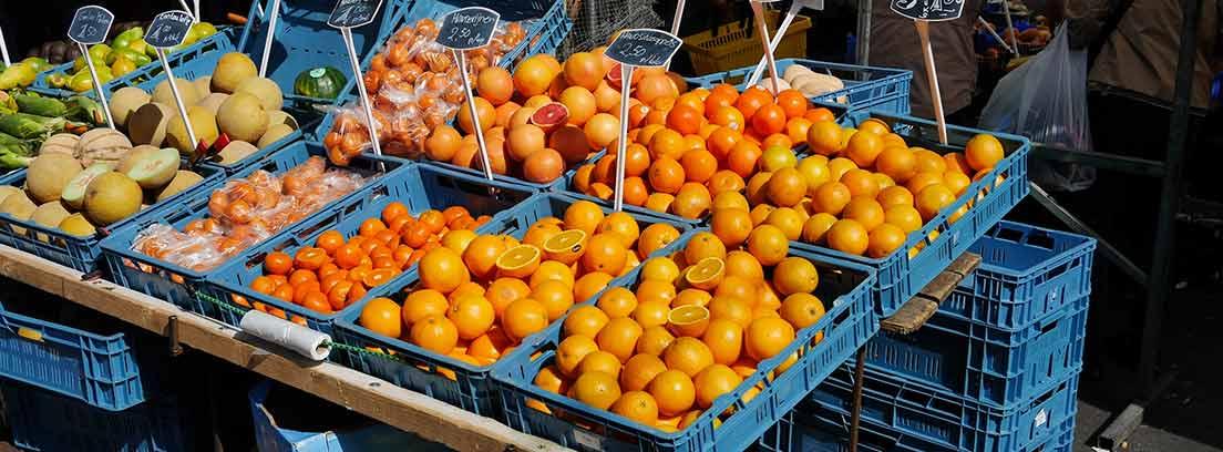Cajas de frutas expuestas para vender con carteles de precios
