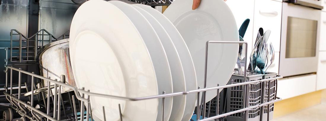 Mano metiendo un plato en un lavavajillas bitérmico