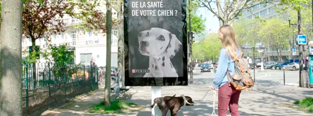 Mujer con perro orinando sobre poste de Street Vet.