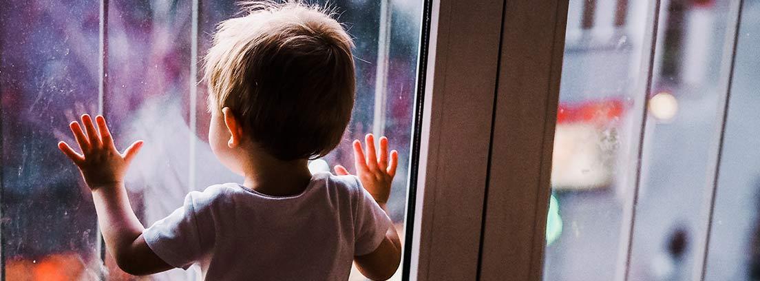 Niño pequeño de espaldas con las manos sobre una puerta de cristales con rejas.