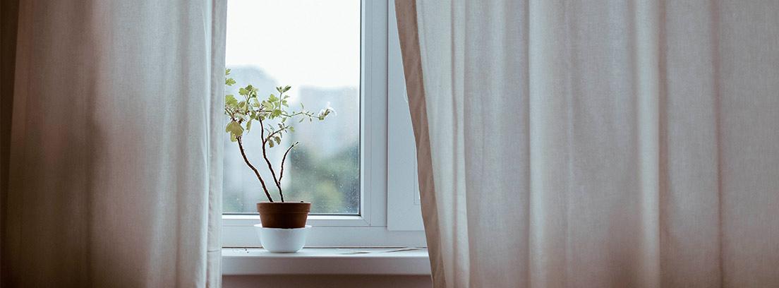 Ventana con cortinas blancas y una maceta con una flor
