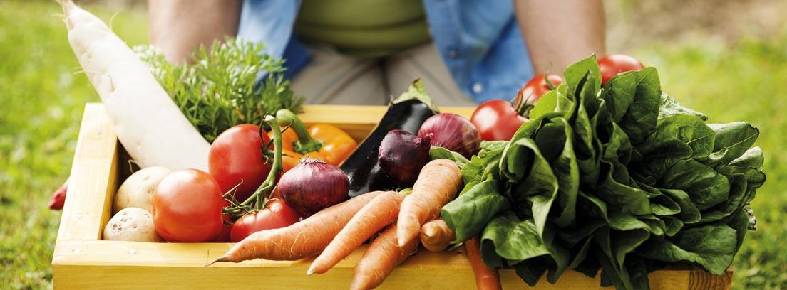 Verduras crudas o cocinadas: cuando y cómo usar cada tipo